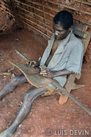 Harp-zither of the Baka Pygmies