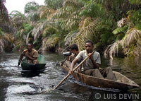 Pirogue expedition with the Baka Pygmies