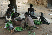 Bedzan-Tika Pygmy women cooking manioc leaves